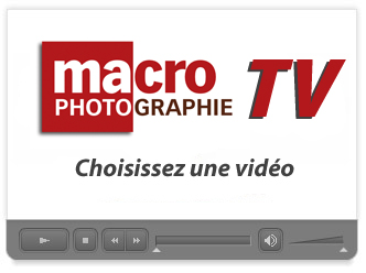 Macro Photographie TV